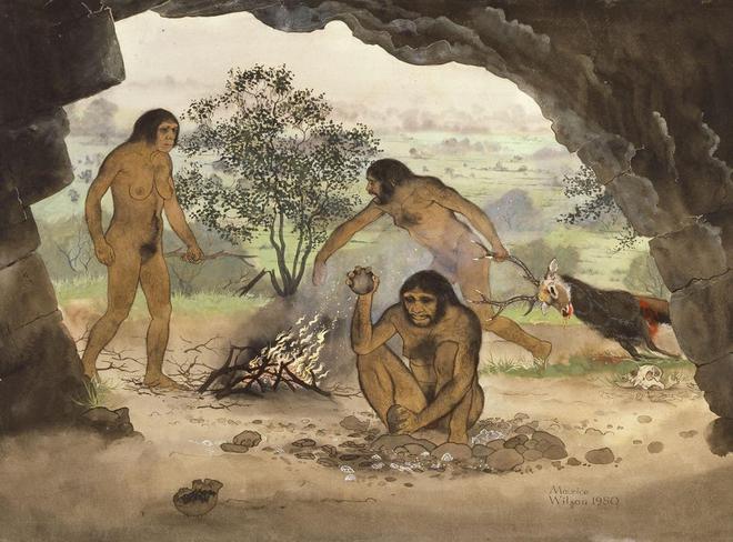 Vì sao người tiền sử lại rời khỏi lục địa Châu Phi? - Ảnh 2.