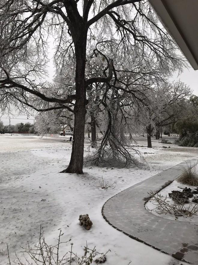 Hệ thống pin Powerwall của Tesla là cứu tinh của người dân Texas giữa thời tiết giá lạnh - Ảnh 1.