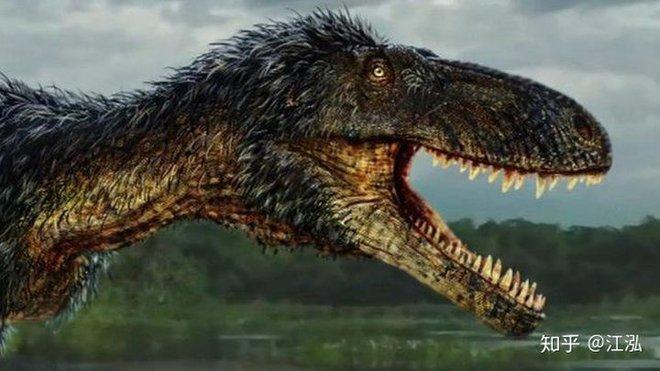 Giải mã bí ẩn về sự trỗi dậy của họ Tyrannosaurus - Khủng long bạo chúa - Ảnh 5.