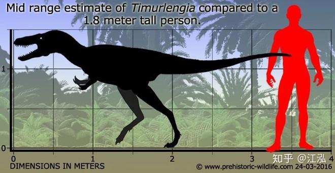 Giải mã bí ẩn về sự trỗi dậy của họ Tyrannosaurus - Khủng long bạo chúa - Ảnh 4.