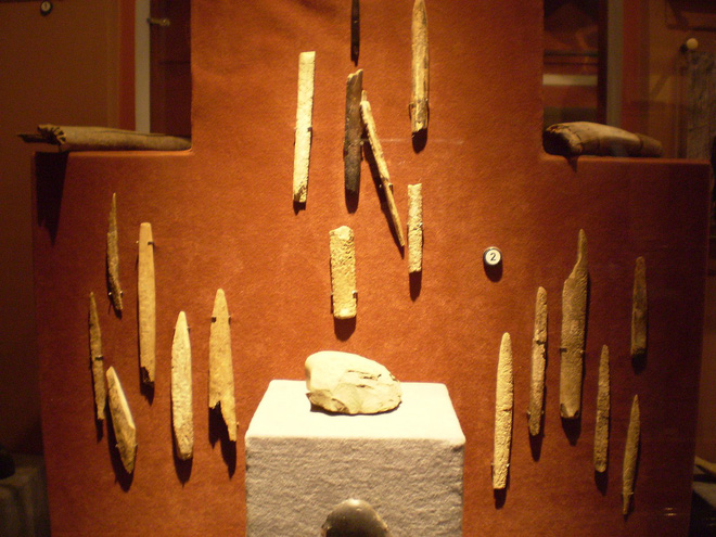 Chó đã làm bạn với con người từ ít nhất 23.000 năm trước - Ảnh 4.