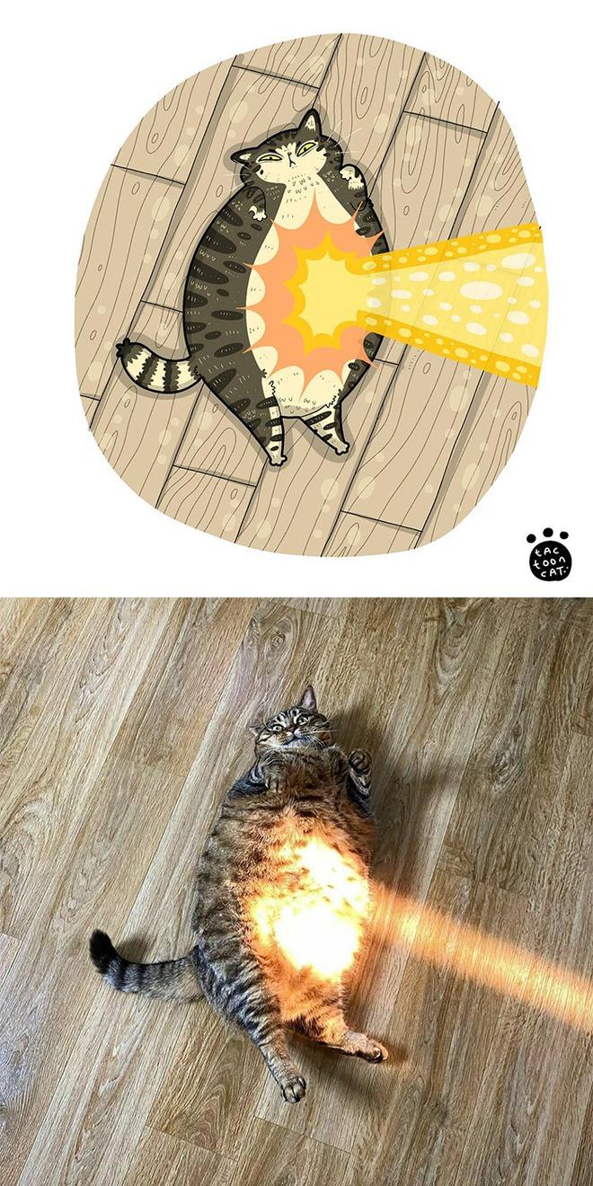 [Chùm ảnh vui] Khi ảnh meme của các boss mèo được vẽ lại siêu đáng yêu khiến ai xem xong cũng phải mỉm cười - Ảnh 23.