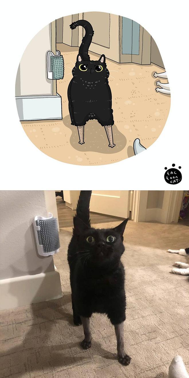 [Chùm ảnh vui] Khi ảnh meme của các boss mèo được vẽ lại siêu đáng yêu khiến ai xem xong cũng phải mỉm cười - Ảnh 10.