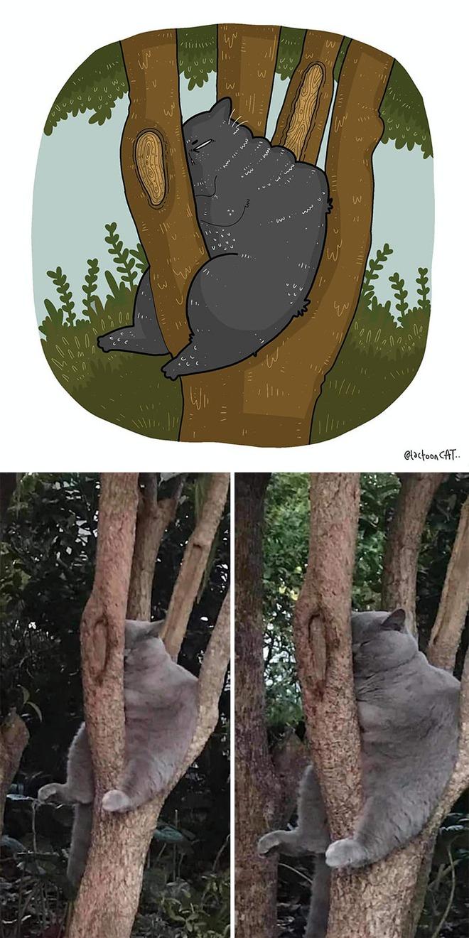 [Chùm ảnh vui] Khi ảnh meme của các boss mèo được vẽ lại siêu đáng yêu khiến ai xem xong cũng phải mỉm cười - Ảnh 7.
