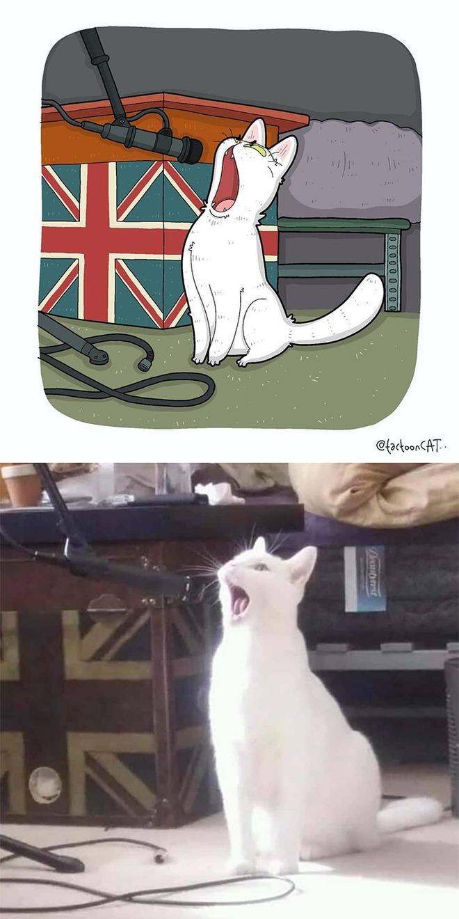 [Chùm ảnh vui] Khi ảnh meme của các boss mèo được vẽ lại siêu đáng yêu khiến ai xem xong cũng phải mỉm cười - Ảnh 11.
