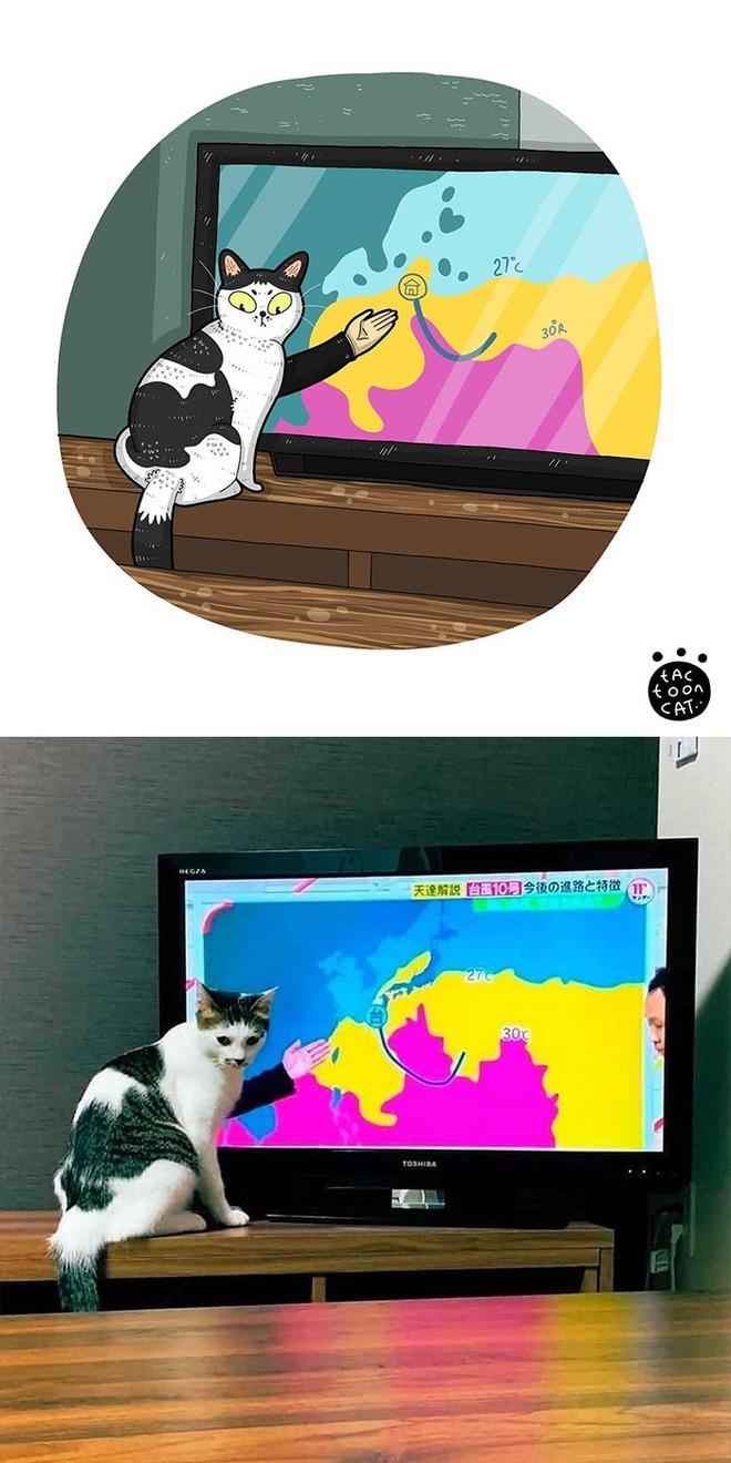 [Chùm ảnh vui] Khi ảnh meme của các boss mèo được vẽ lại siêu đáng yêu khiến ai xem xong cũng phải mỉm cười - Ảnh 9.