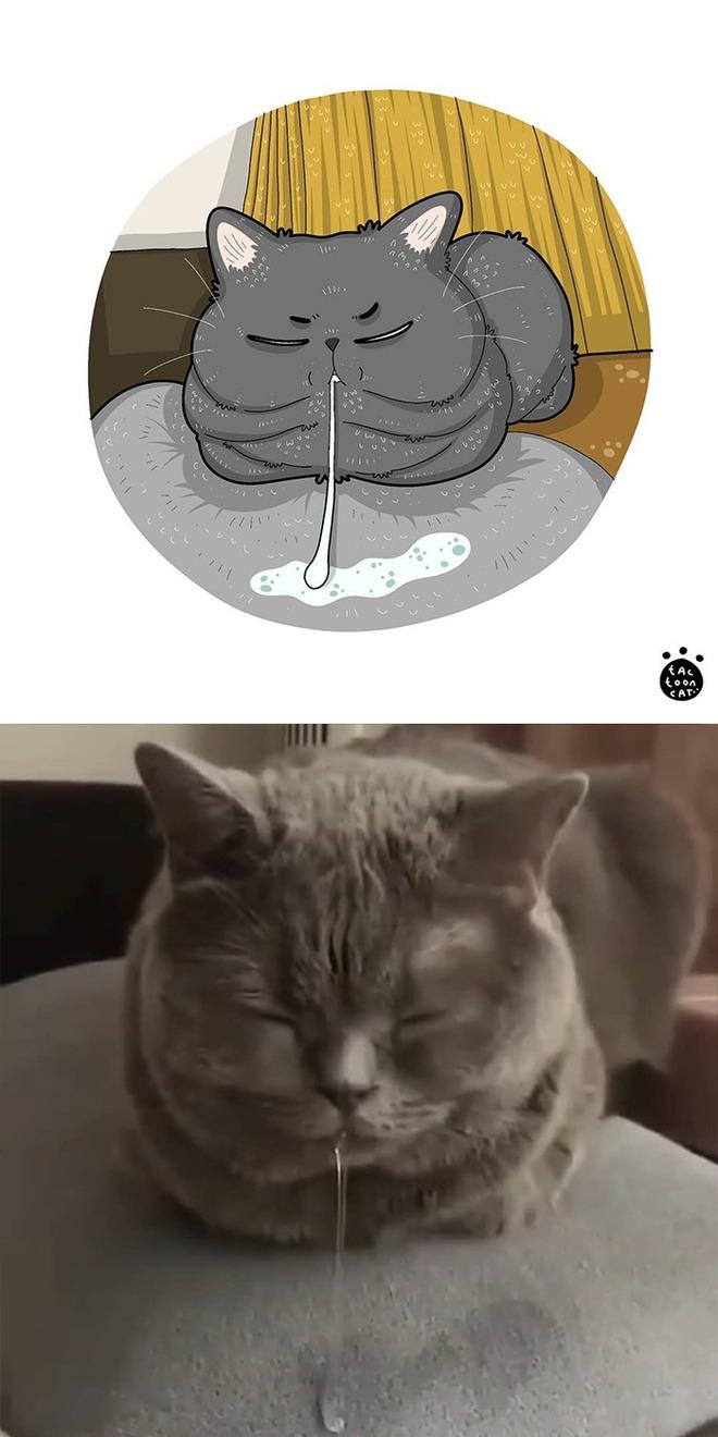 [Chùm ảnh vui] Khi ảnh meme của các boss mèo được vẽ lại siêu đáng yêu khiến ai xem xong cũng phải mỉm cười - Ảnh 5.