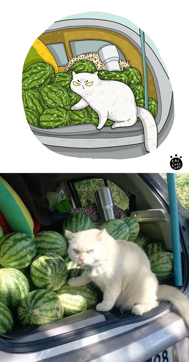 [Chùm ảnh vui] Khi ảnh meme của các boss mèo được vẽ lại siêu đáng yêu khiến ai xem xong cũng phải mỉm cười - Ảnh 18.