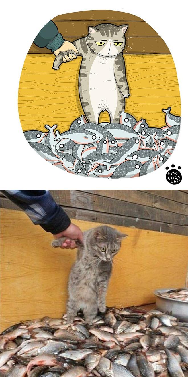 [Chùm ảnh vui] Khi ảnh meme của các boss mèo được vẽ lại siêu đáng yêu khiến ai xem xong cũng phải mỉm cười - Ảnh 19.