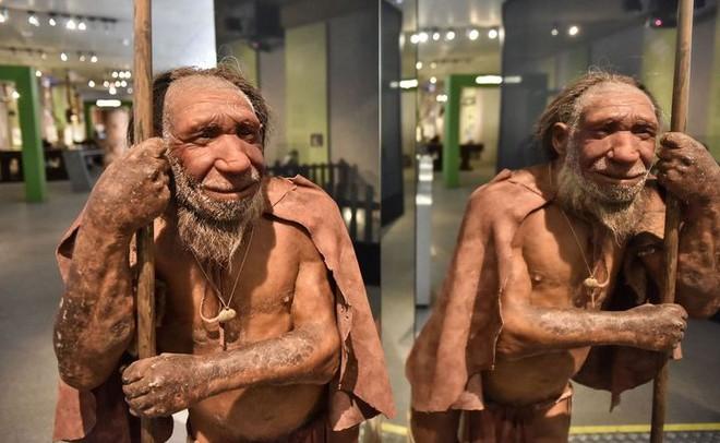 Nếu người Neanderthal không bị tuyệt chủng, thế giới sẽ ra sao? - Ảnh 6.