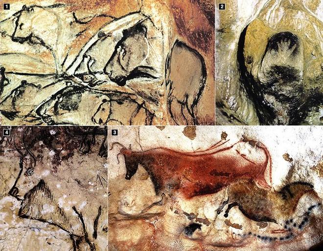 Nếu người Neanderthal không bị tuyệt chủng, thế giới sẽ ra sao? - Ảnh 5.