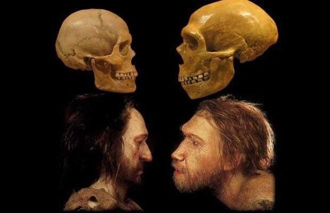 Nếu người Neanderthal không bị tuyệt chủng, thế giới sẽ ra sao? - Ảnh 1.