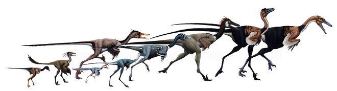 Một loài khủng long mới được phát hiện tại Tây Ban Nha có vẻ ngoài gần giống như loài chim hiện đại - Ảnh 1.