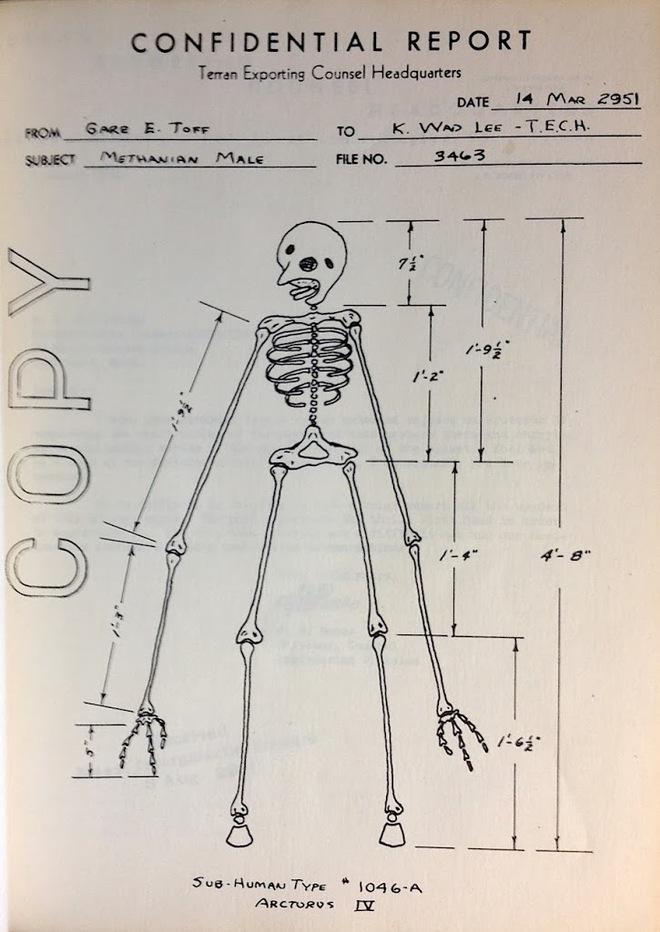 Năm 1951, một nhóm sinh viên nhận bài tập về nhà lạ lùng: thiết kế sản phẩm cho một chủng tộc ngoài hành tinh có gốc gác chim chóc - Ảnh 1.