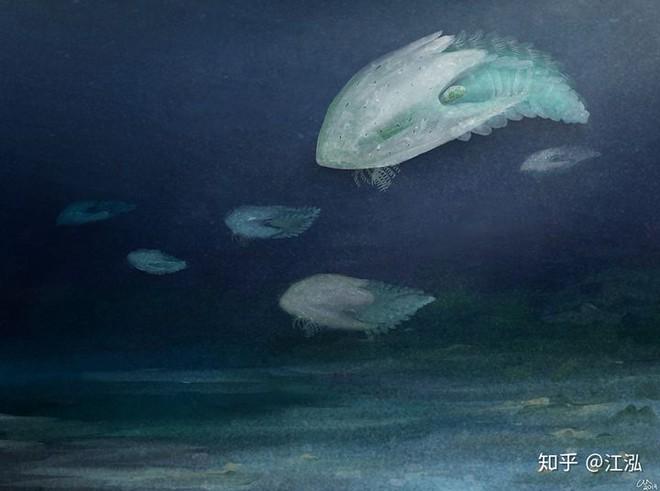 Phát hiện loài quái vật khổng lồ hơn 500 triệu năm tuổi có thân hình giống như một con tàu vũ trụ - Ảnh 8.