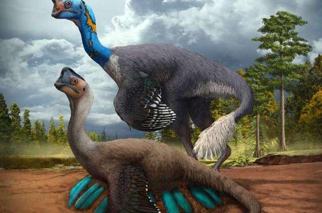 Phát hiện hóa thạch khủng long chết trong khi đang ấp trứng với những con non đang nở - Ảnh 2.