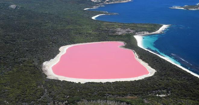Những vùng nước nguy hiểm nhất thế giới, bạn sẽ không bao giờ muốn bơi ở đó - Ảnh 5.