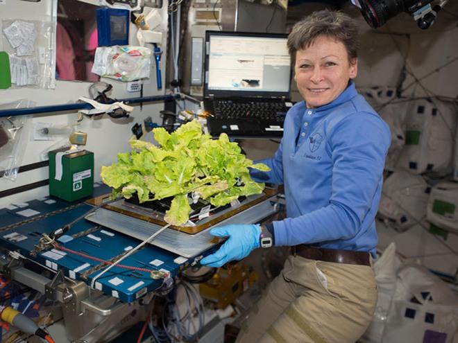 Các nhà khoa học phát hiện 3 chủng vi khuẩn chưa từng thấy trên Trạm Vũ trụ Quốc tế ISS - Ảnh 3.