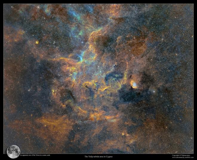 Đây là bức ảnh chụp dải Ngân Hà siêu to khổng lồ, tốn 12 năm thực hiện, 1250 giờ phơi sáng mới hoàn thành - Ảnh 6.