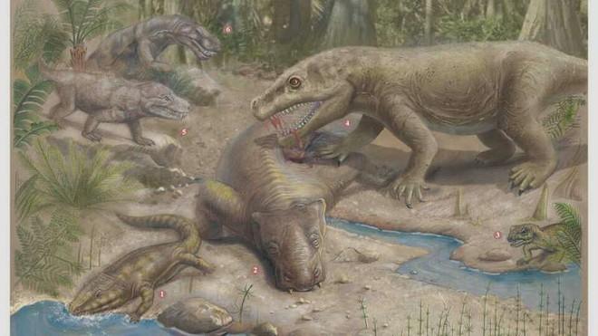 Phải mất 10 triệu năm sự sống trên Trái Đất mới có thể phục hồi sau sự kiện The Great Dying - Ảnh 1.
