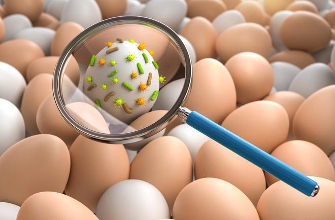 Khoa học chỉ bạn cách khử độc trứng đơn giản, yên tâm thưởng thức trứng sống mà không sợ khuẩn salmonella - Ảnh 1.