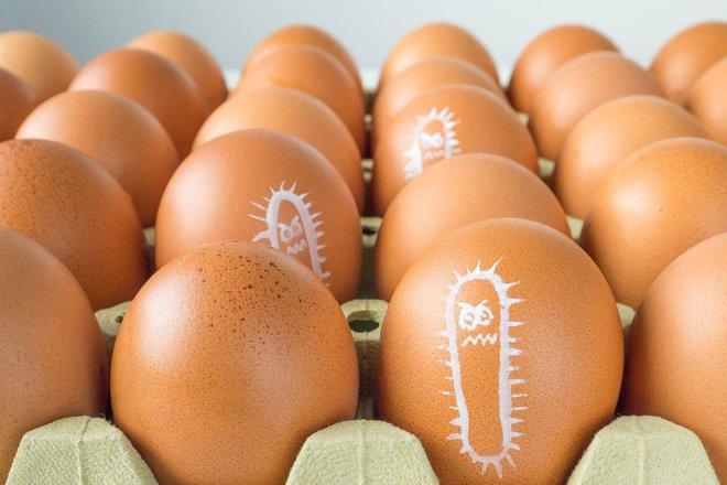 Khoa học chỉ bạn cách khử độc trứng đơn giản, yên tâm thưởng thức trứng sống mà không sợ khuẩn salmonella - Ảnh 2.