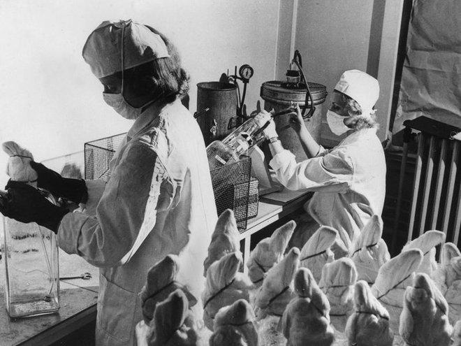 Li kỳ vụ trộm vắc-xin đi vào lịch sử năm 1959: Nó đã dạy chúng ta điều gì trong cuộc tiêm chủng COVID-19? - Ảnh 7.