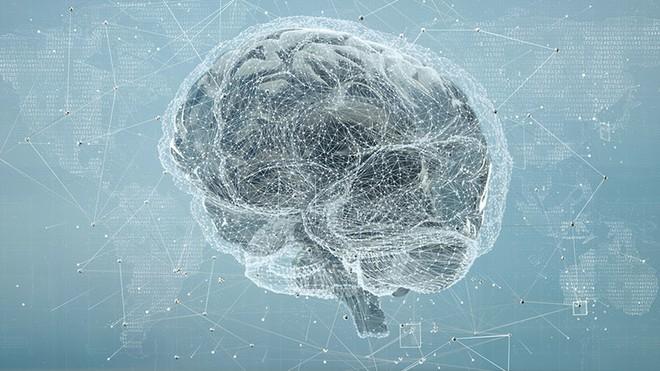 Bộ não của chúng ta có dung lượng bao nhiêu, và nó có thể bị đầy không? - Ảnh 4.