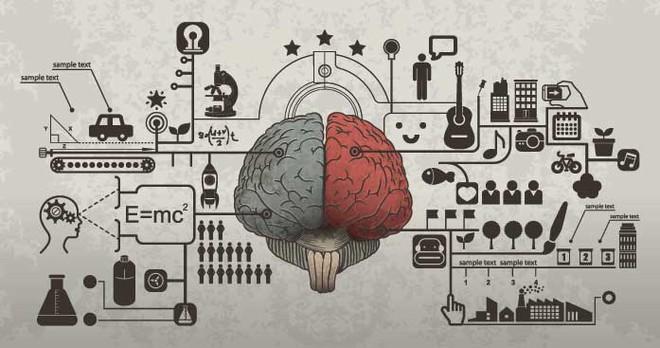 Bộ não của chúng ta có dung lượng bao nhiêu, và nó có thể bị đầy không? - Ảnh 3.
