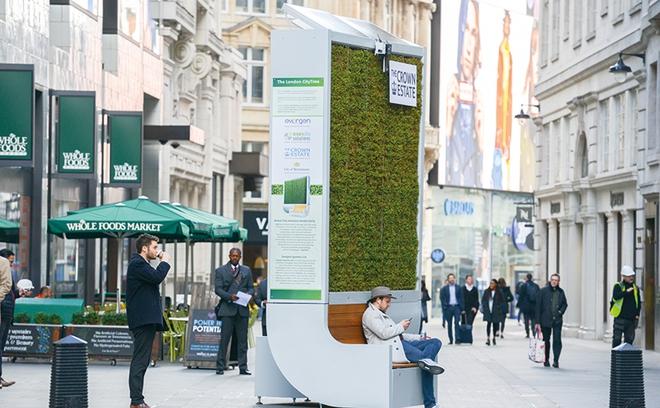 Người nông dân Đức 29 tuổi này muốn trồng được 1 triệu mét vuông rêu bên trong các thành phố - Ảnh 4.