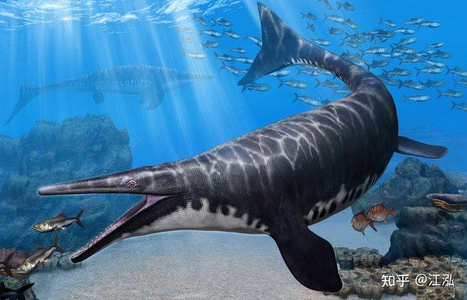Phát hiện loài Thương long mới sở hữu cá miệng của loài cá sấu - Ảnh 7.