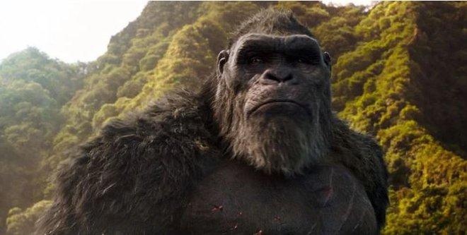 Godzilla vs. Kong: Những chi tiết quan trọng giúp MonsterVerse trở nên có chiều sâu thay vì chỉ là loạt bom tấn xem cho sướng mắt - Ảnh 8.