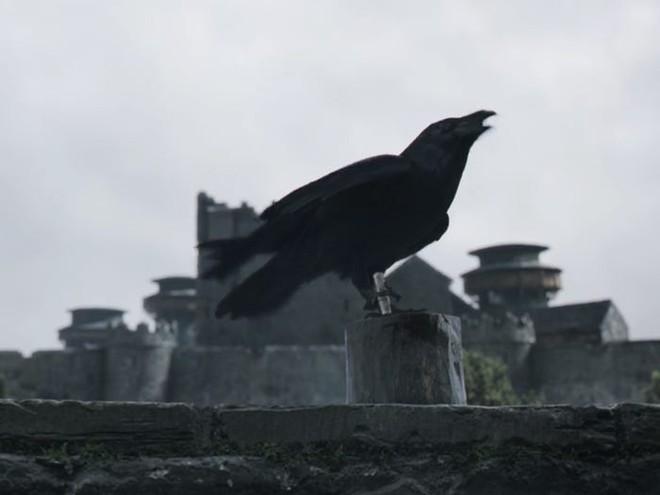 10 năm nhìn lại: Tập đầu tiên của Game of Thrones từng bị chủ tịch HBO chê đến mức phải làm lại, thay đổi hoàn toàn kịch bản lẫn diễn viên - Ảnh 8.