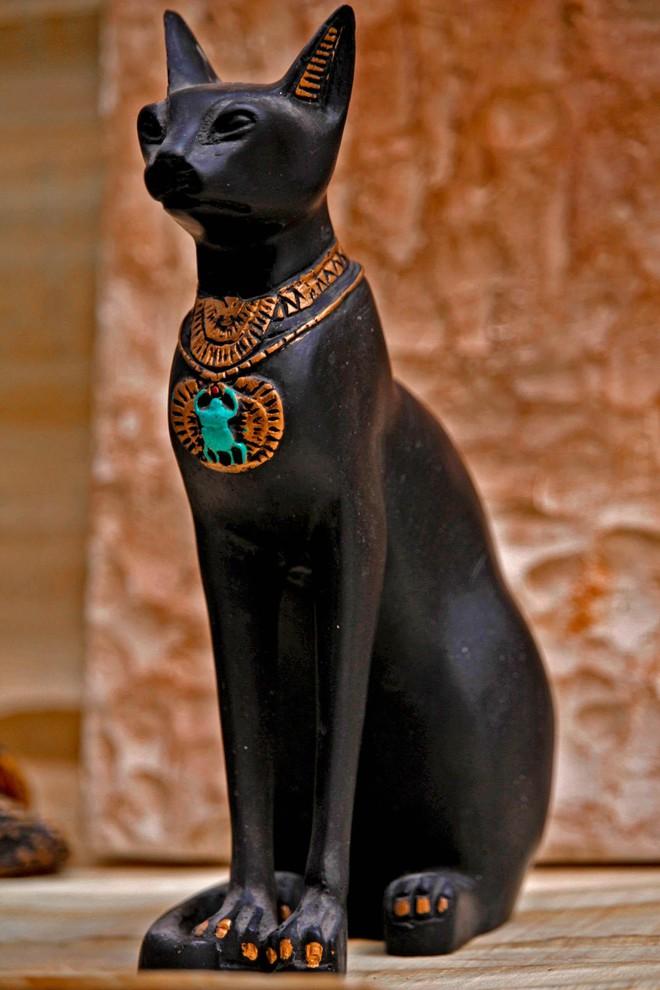 Tại sao người Ai Cập cổ đại lại bị ám ảnh bởi loài mèo? - Ảnh 4.