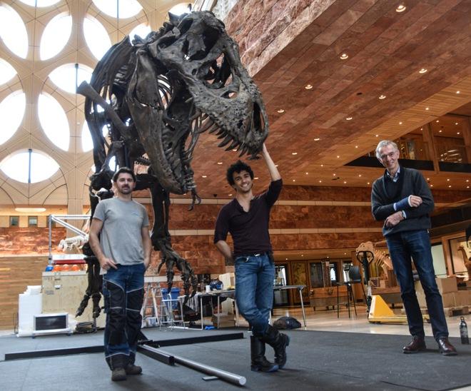 Bạn có thể không cần chạy nhanh hơn một chú T. rex - đi bộ nhanh hơn nó là đủ rồi - Ảnh 4.