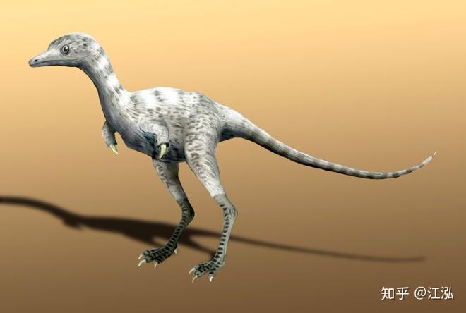 Phát hiện loài động vật hai ngón chuyên ăn cắp trứng khủng long - Ảnh 7.