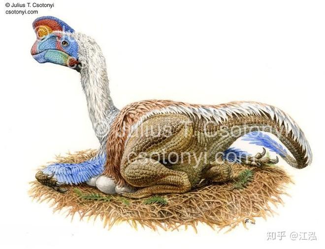 Phát hiện loài động vật hai ngón chuyên ăn cắp trứng khủng long - Ảnh 3.