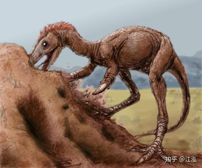 Phát hiện loài động vật hai ngón chuyên ăn cắp trứng khủng long - Ảnh 8.