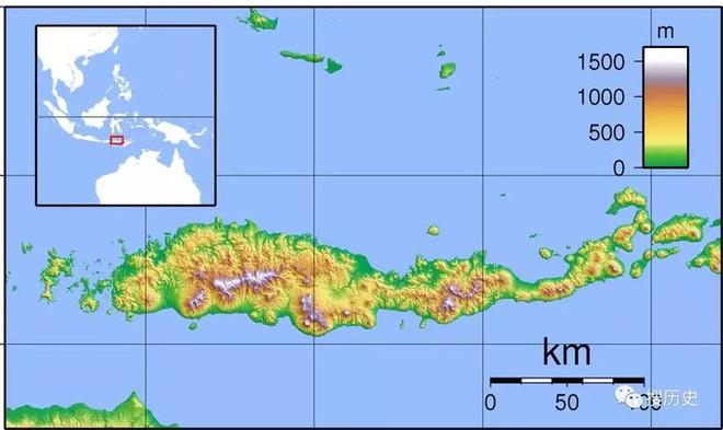 Tại sao những loài động vật trên các hòn đảo luôn kỳ dị hơn những người anh em trên đất liền? - Ảnh 6.