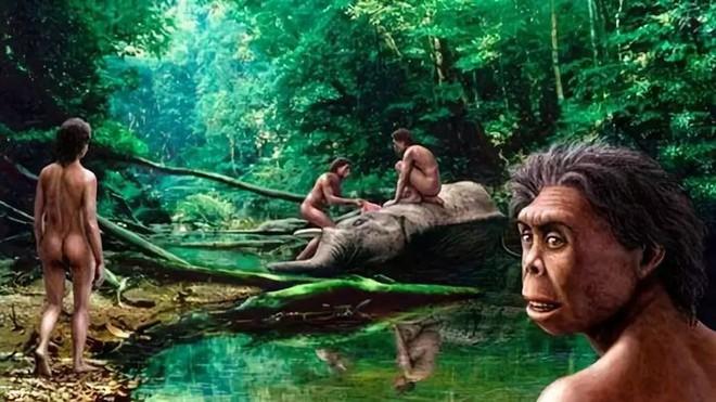 Tại sao những loài động vật trên các hòn đảo luôn kỳ dị hơn những người anh em trên đất liền? - Ảnh 10.