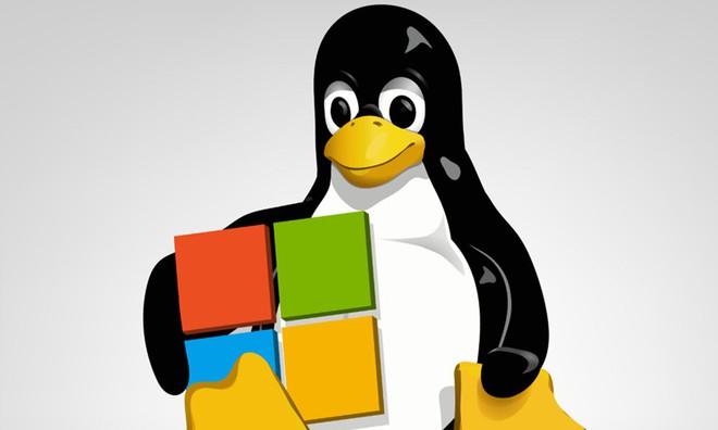Tại sao Windows vẫn đang ở dưới Trái Đất, còn Linux đã đi ra vũ trụ và đến tận Sao Hỏa? - Ảnh 5.