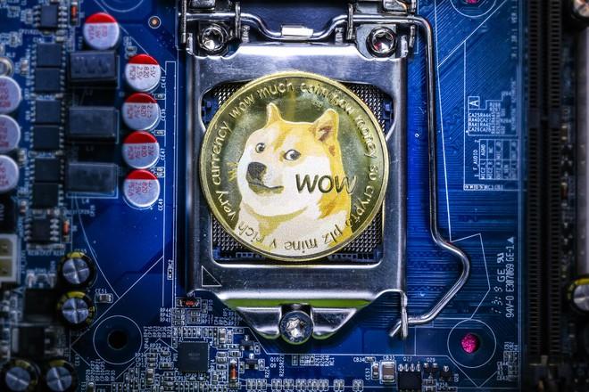 Lãi triệu USD nhờ Dogecoin, giám đốc điều hành Goldman Sachs bỏ việc lương cao để về hưu non - Ảnh 2.