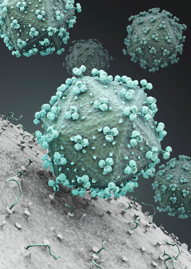 Giữa đại dịch của một virus, một virus đại dịch khác lại đang cứu sống những đứa trẻ bong bóng - Ảnh 6.