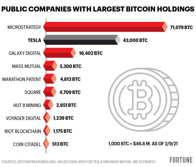 Giá càng tụt sâu, cá mập giữ số Bitcoin nhiều nhất thế giới càng tranh thủ 'bắt đáy' - Ảnh 2.