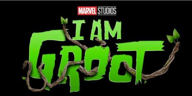 Tất tần tật những series sắp ra mắt của Marvel Studios, 1 loạt siêu anh hùng mới chuẩn bị đổ bộ MCU trong thời gian tới - Ảnh 11.