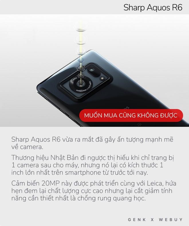 """5 smartphone có cảm biến ảnh """"to nhất quả đất"""", nhưng chụp đẹp nhất không thì chưa biết - Ảnh 2."""
