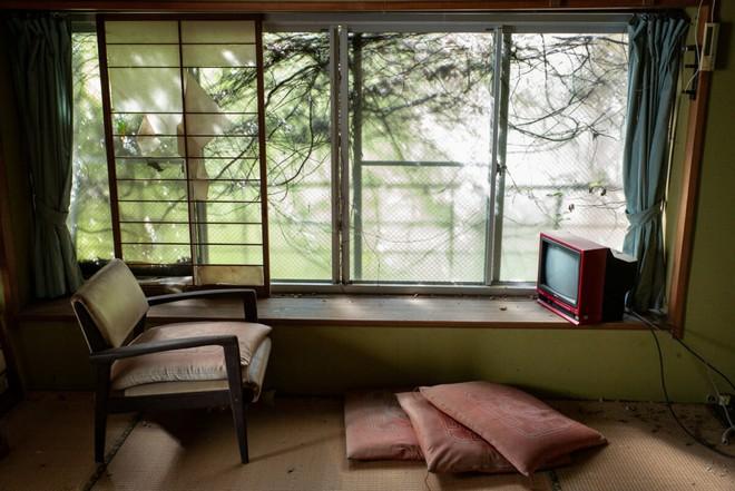Bộ ảnh đẹp tới nao lòng về những chiếc TV cũ bị bỏ hoang ở Nhật Bản - Ảnh 1.