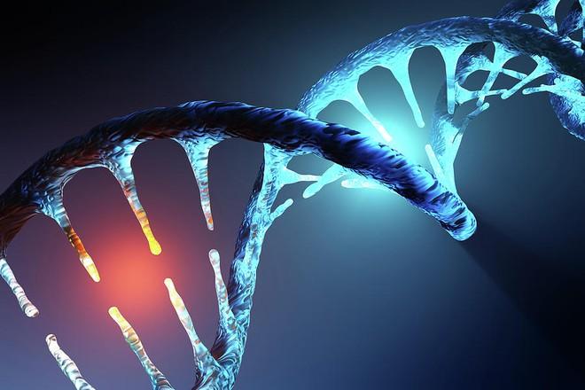 Các nhà nghiên cứu tại Harvard phát triển thành công cách thức chỉnh sửa gen mới hữu hiệu hơn cả CRISPR - Ảnh 1.