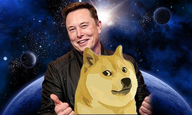 Elon Musk thích thú ý tưởng bồn tắm nước nóng kiêm máy đào Dogecoin, hy vọng giải cứu cho bong bóng sắp vỡ - Ảnh 1.