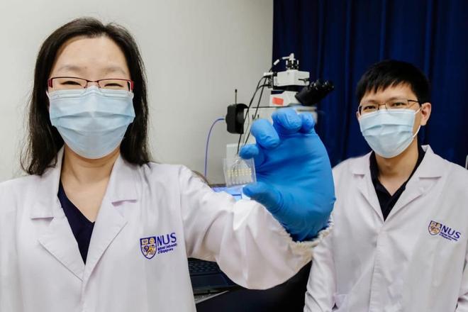 Để hóa trị ung thư không còn là may rủi: Xét nghiệm máu này chỉ mất 24 giờ để dự đoán sự hiệu quả của thuốc đích - Ảnh 3.